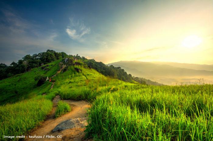 Hills Path